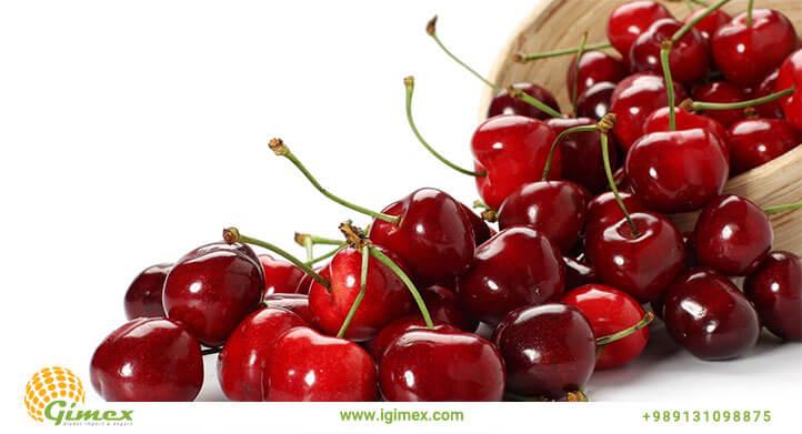 m nine - از کجا می توان با کیفیت ترین میوه صادراتی را با قیمت مناسب تهیه کرد؟