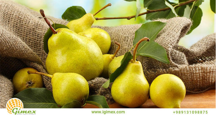 m seven - از کجا می توان با کیفیت ترین میوه صادراتی را با قیمت مناسب تهیه کرد؟