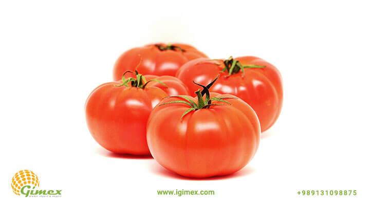 گوجه صادراتی