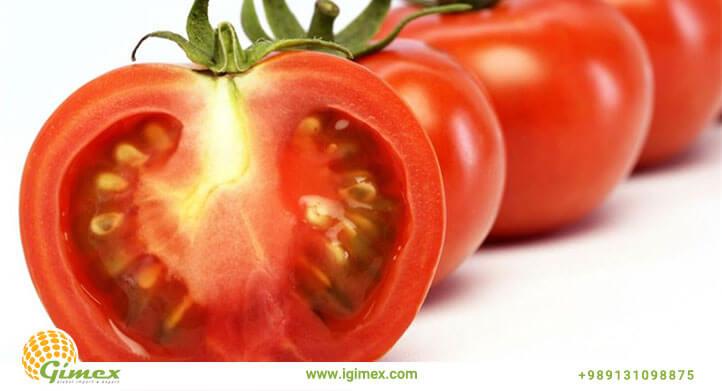 قیمت گوجه صادراتی