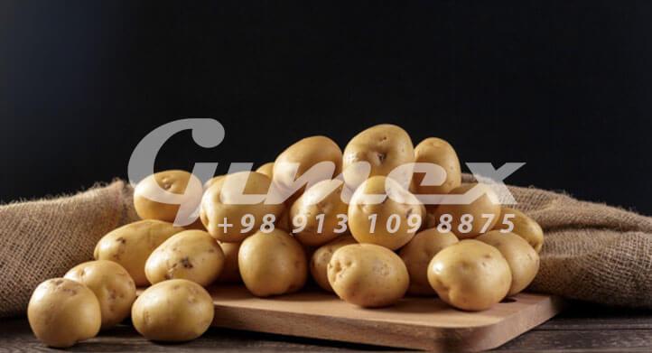 سیب زمینی صادراتی ایرانی